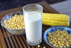 豆浆机食谱
