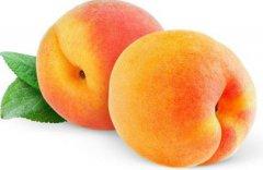 秋天吃桃子好吗 桃子的功效与作用
