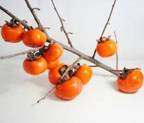 【柿子怎么做好吃】柿子怎么去皮_柿子怎么催熟