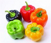 【柿子椒怎么做好吃】柿子椒的营养价值_柿子椒怎么挑选