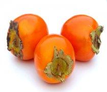 【柿子吃多了会胖吗】柿子怎么保存_柿子不能和什么一起吃